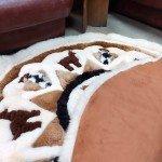 Реставрация и ремонт ковров